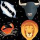 Space zodiac